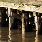 Fiskhamnen
